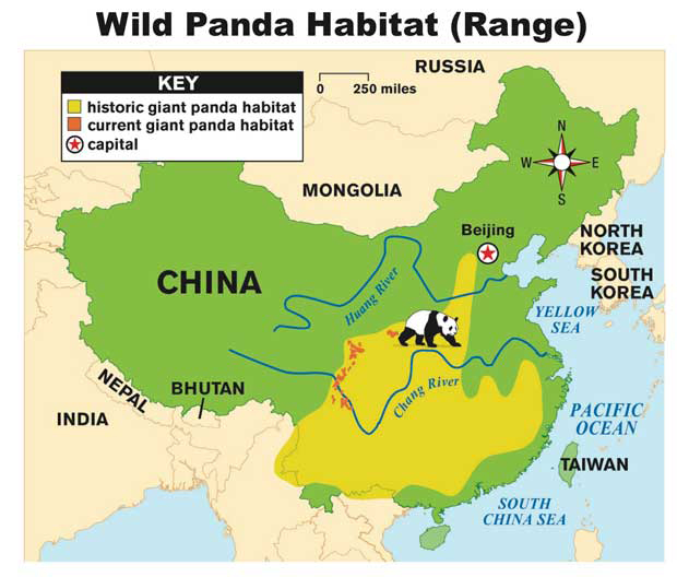 Giant Panda Distribution